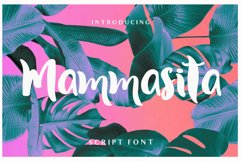 Mammasita Script Font Product Image 1
