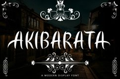 AKIBARATA Product Image 1