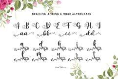 Botanical Flourish a Natural Handwritten Font Product Image 2