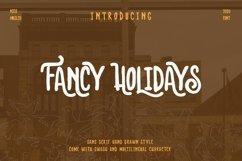 Fancy Holidays Product Image 1