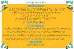 Ellayra | Handwritten Script Font Product Image 6
