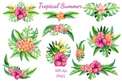 Tropical Summer Product Image 4