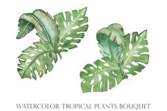 Watercolor tropical green leaves set and pattern Product Image 2