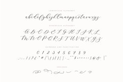 Adore Calligraphy Font Product Image 5