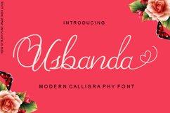 Usbanda Script Product Image 1