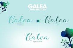 Galea Script Product Image 4