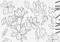Magnolia Outline Set Product Image 2