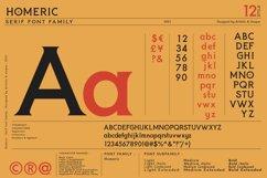 Homeric- Serif font Family Product Image 2
