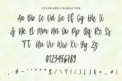 Modern Script Font - Amanda Jasmine Product Image 3