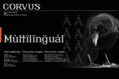 CORVUS Serif font Family Product Image 3