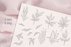 Peony flowers procreate stamp brushes, clipart Product Image 3