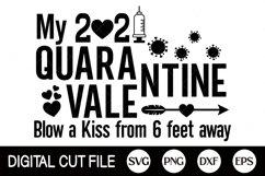 2021 Svg, Quarantine Valentine Svg, Syringe Svg, 2021 Covid Product Image 1