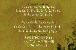 Web Font Nikiye Font Product Image 4