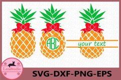 Pineapple with bow Svg, Pineapples SVG, bow, Monogram SVG Product Image 1