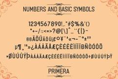 Primera Fontype Product Image 4
