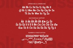 Solid Classic Font Product Image 5