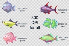Fish Product Image 6