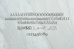 Aludra Serif 12 Font Family Pack Product Image 3