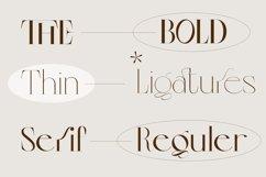 Colibre Bristole Pro |Aesthetic Ligature Font Product Image 2