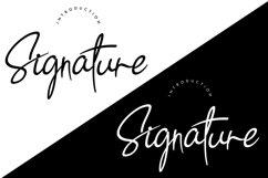 Signature Product Image 2