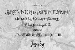 Web Font Joyously - Handwritten Script Font Product Image 5