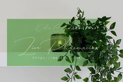 Groen Studio Product Image 5