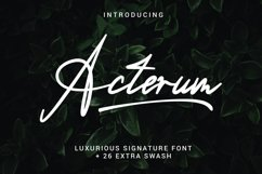 Acterum Signature Font - 26 Extra Swash Product Image 1