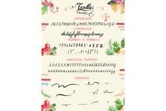 Trouble Script Font Product Image 6