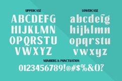 Pacho - Serif Family Product Image 3