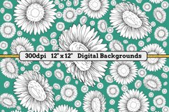 White Daisies - 16 Digital Papers/Backgrounds Product Image 4
