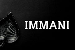Immani Serif 2 Font Family Pack Product Image 1