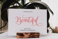 Mariposa Script Calligraphy Product Image 5