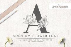 Adenium Font Gold & Rose Gold Foil Product Image 1