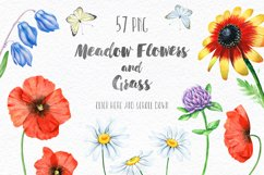 Floral set. Over 115 PNG Product Image 5