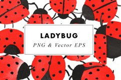 Watercolor Lady Bug Illustrations Clip Art in EPS & PNG Product Image 1
