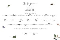 Belagia - Classy Calligraphy Product Image 5