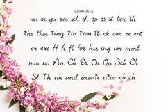 Gaura Font Product Image 3