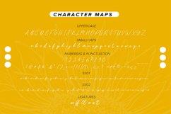 Sunflower   Freehand Signature Font Product Image 6