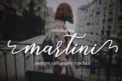 martini script Product Image 2