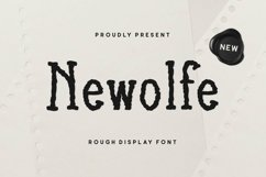 Web Font Newolfe Display Font Product Image 1