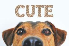 Dog Paw - Pet Font Product Image 4