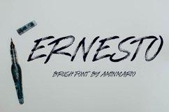 ERNESTO Product Image 1