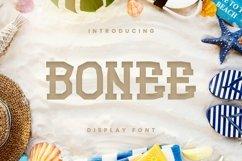 Web Font Bonee Font Product Image 1