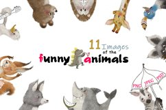 funny animals clipart set Product Image 1