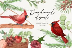 Watercolor cardinal clipart, Winter clipart, Merry christmas Product Image 1