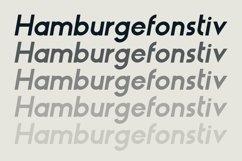 HAUS Sans Bold Product Image 3