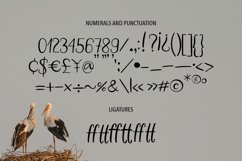 WHITE STORK. A HANDWRITTEN DUO FONT. Product Image 4