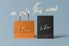 Web Font Fullerton - Brush Script Font Product Image 3