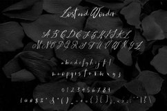 LOST AND WONDER SCRIPT FONT Product Image 2