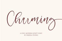 Gorgeous Calligraphy Font Bundle  Limited Time Offer!!! Product Image 4